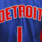 Detroit Pistons: aspirantes a...