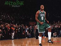Wallpaper Antoine Walker